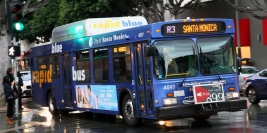 "Santa Monica Municipal Bus Lines (""Blue Bus"")"