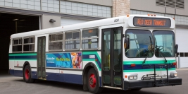 Red Deer Transit
